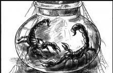 Las Vegas newspaper scorpions